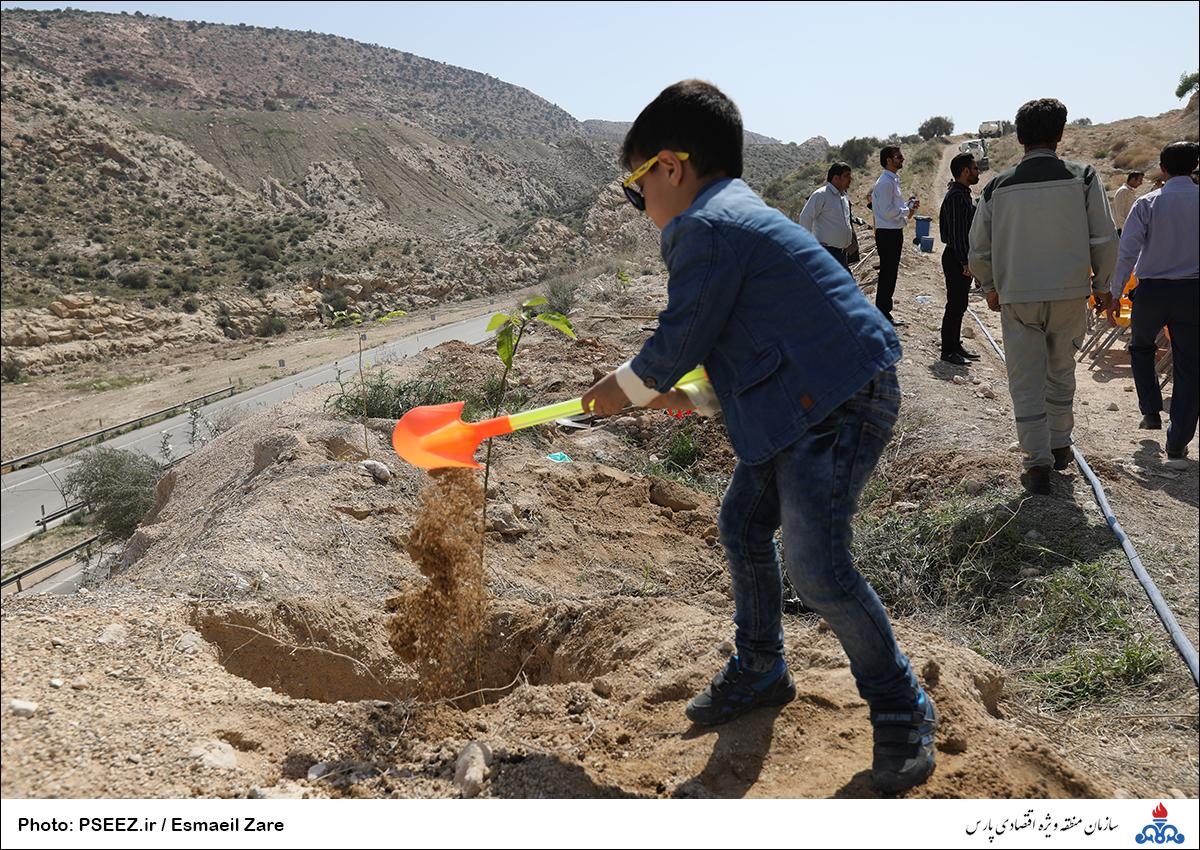 کاشت نهال در کوه پردیس جم 25